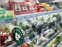 A.T.カーニー出身コンサルが、タイで「農作物流通」の仕組み化を目指す理由