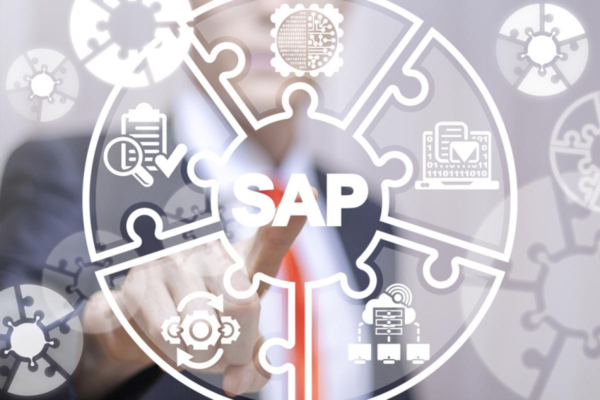 「保守切れ」で対応必至、SAP基幹システムはフローチャートで刷新せよ